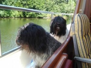 Op de boot mee op vakantie
